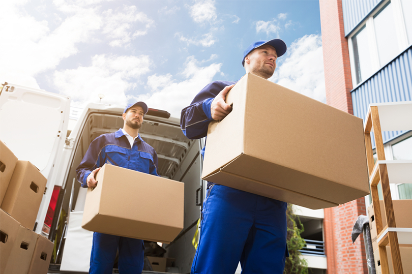 Removalist For Your Move